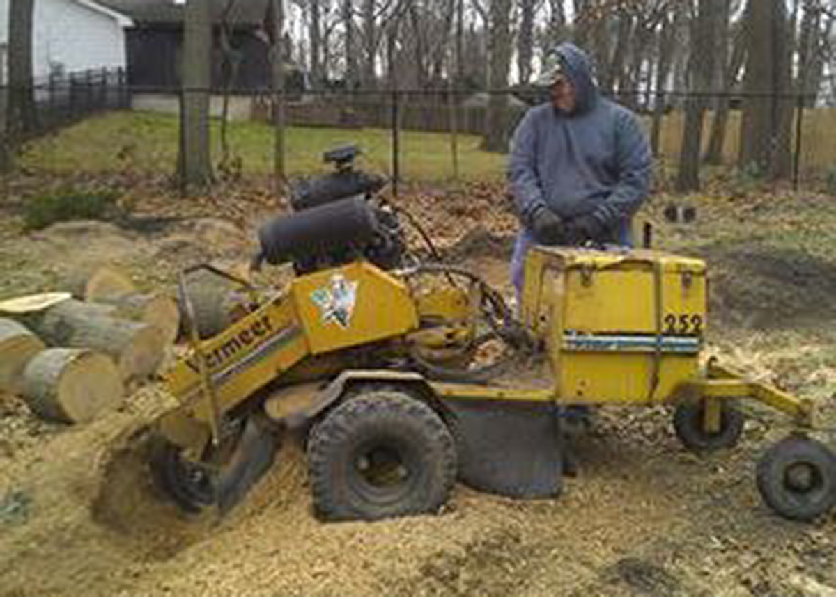Stump grinding machine and worker