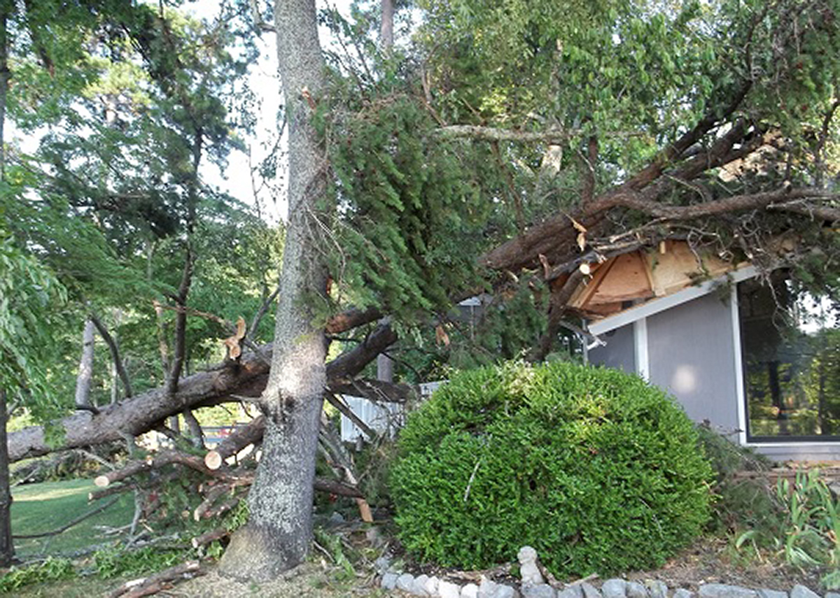 Storm damage cleanup from fallen trees on home