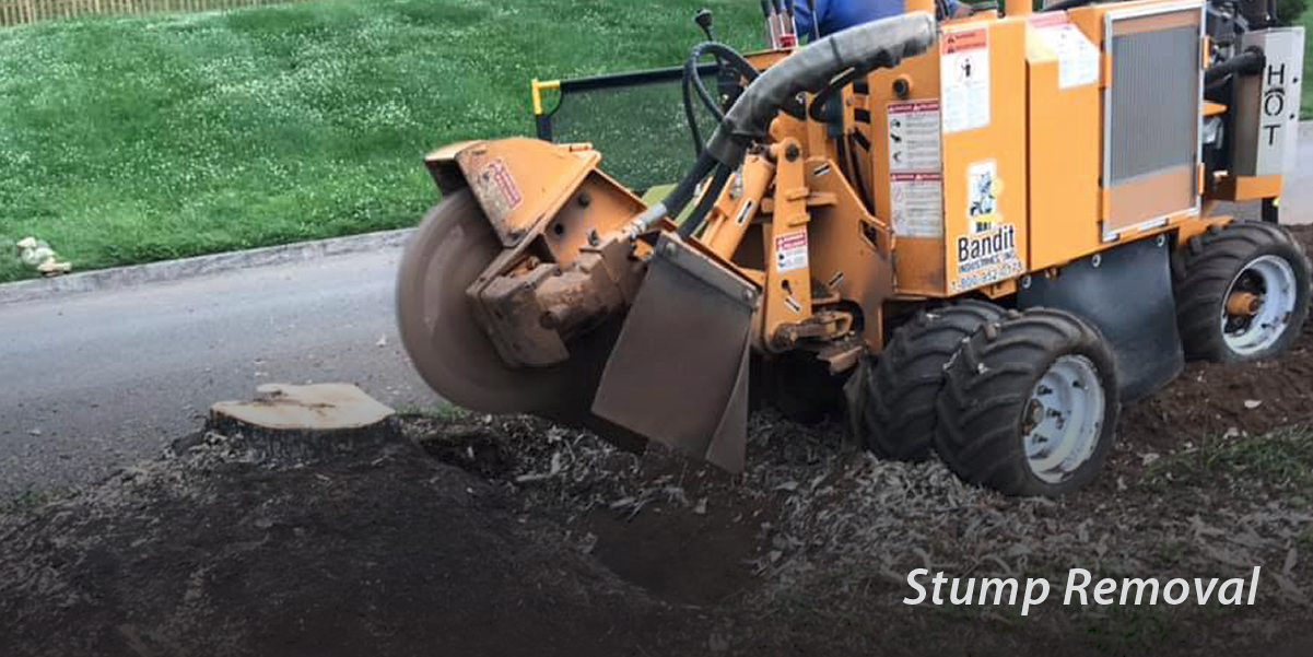 Stump removal with equipment from Anthony Hughes Tree Service