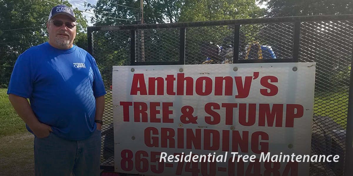 Anthony's Tree & Stump Grinding trailer
